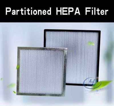 Partitioned HEPA Filter